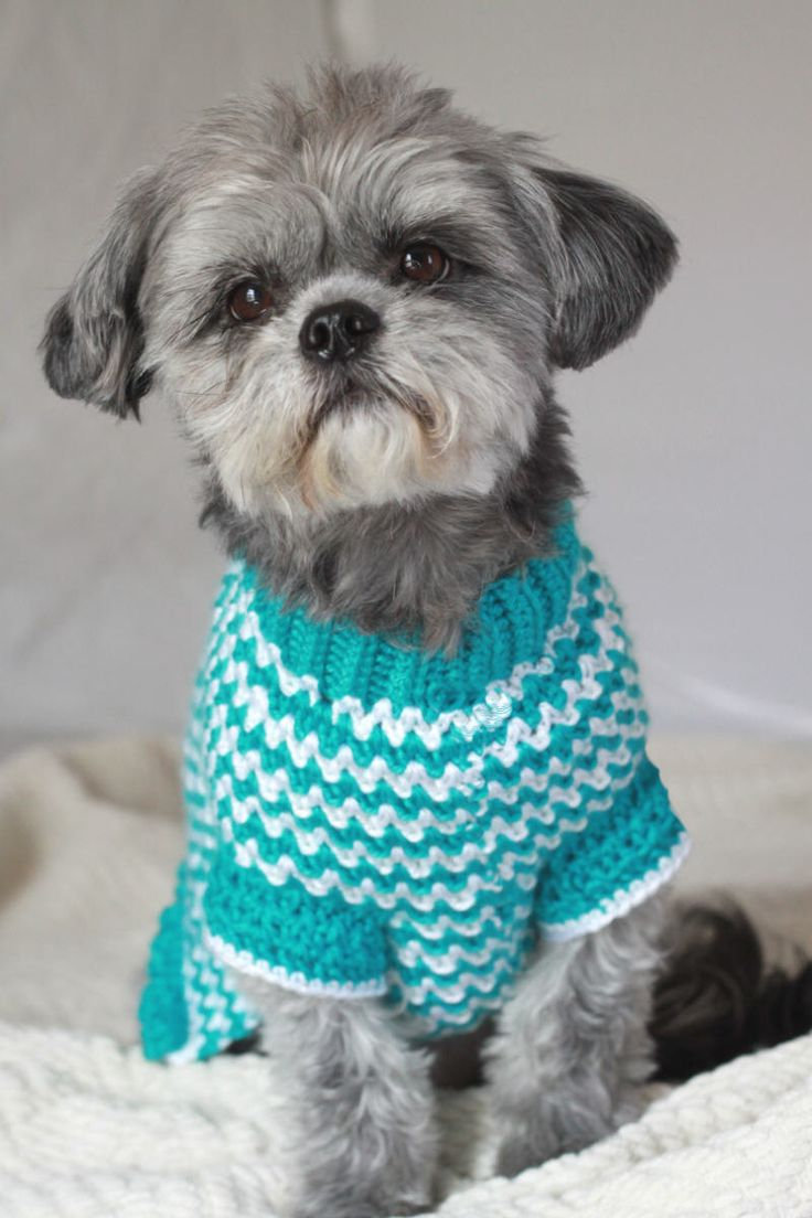 Crochet Dog Sweater: Made with Love!!!