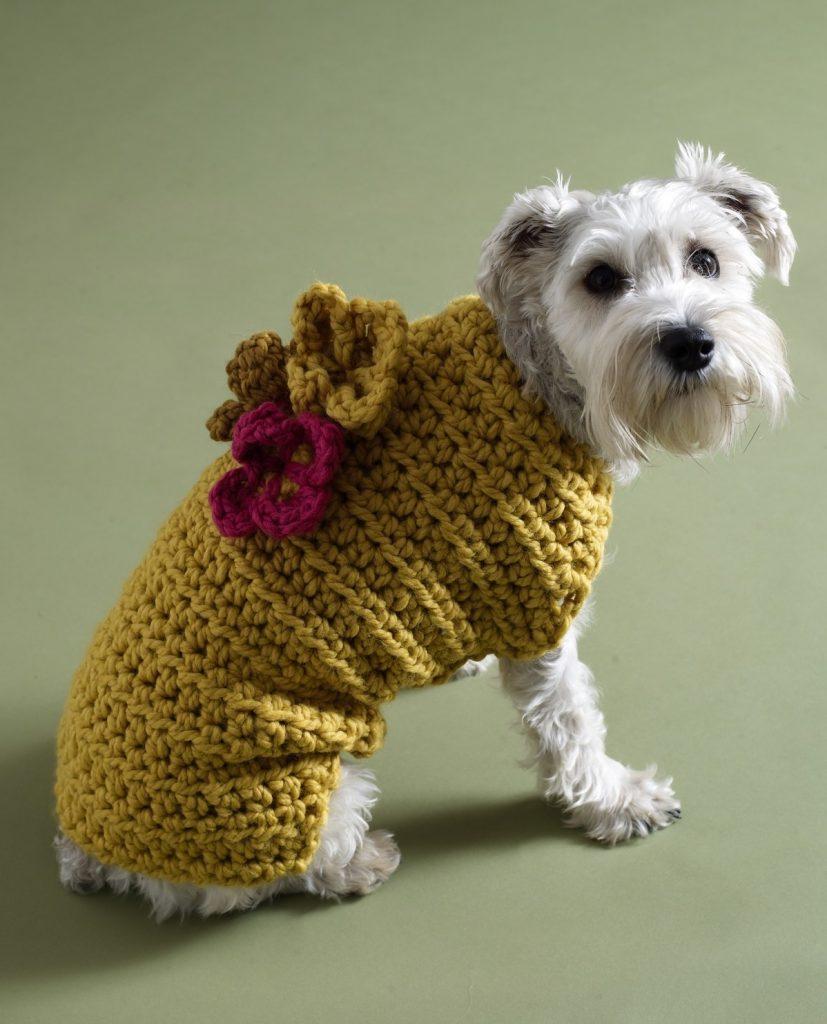 free crochet dog sweater patterns by lion brand dsdrmga