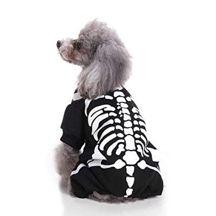 Amazon.com : Pet Cat Dog Sweater, Warm Dog Jumpers Cat Clothes