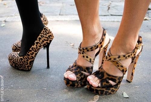 animal print, fashion, feet, girls , heels, high heels - inspiring