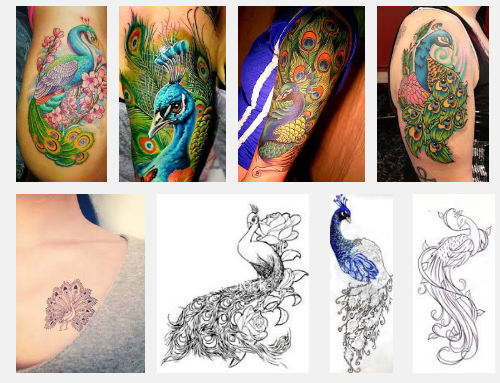 15 Best Peacock Tattoo Designs And Meanings   Styles At Life .