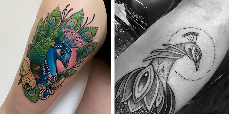 22 Stunning Peacock Tattoo Designs and Where to Ink Th